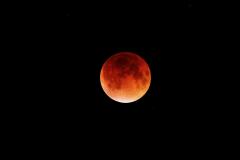 Eclipse-Lune-septembre-2015©Andre-Cajolais