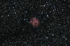 IC5146_-AndreCajolais_PPR